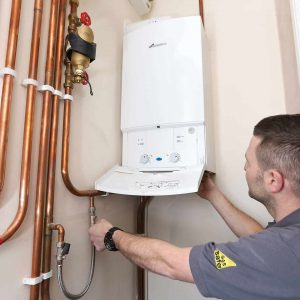 Worcester Gas Safe Installer (1)